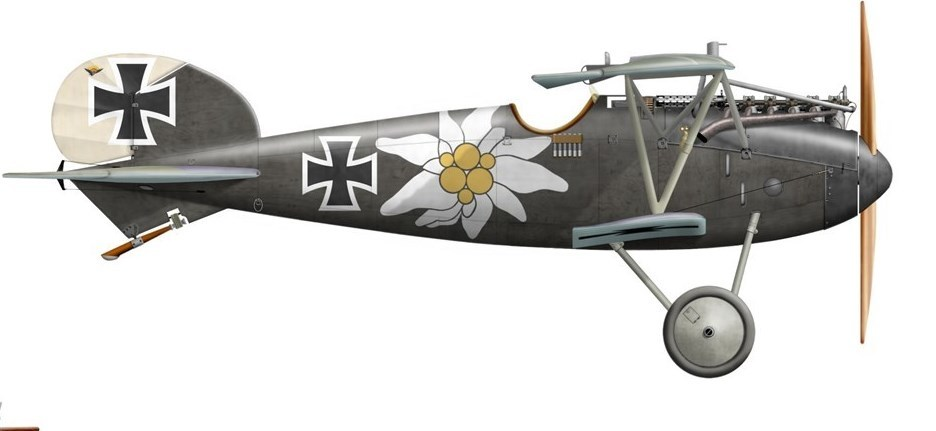 Help WW1 Aviation Heritage Trust Bring back the Albatros DVa and SE5a from NZ in 2018